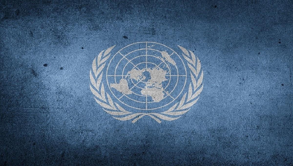 Todo lo que necesitas para trabajar en la ONU